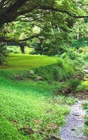 McBryde Garden Kauai Reviews Map