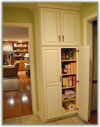 Stand Alone Pantry Closet by Pinterest U0027teki 25 U0027den Fazla En Iyi Stand Alone Pantry Fikri