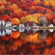 Seymour Pumpkin Festival Parking by Autumn Colors In Seymour Connecticut Usa Fall Scenic Photos