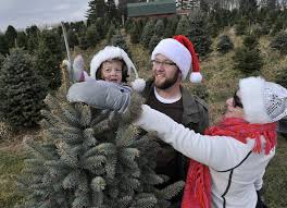Plantable Christmas Trees Columbus Ohio by Christmas Tree Farms Fresh Cut Christmas Trees Near Dayton Oh