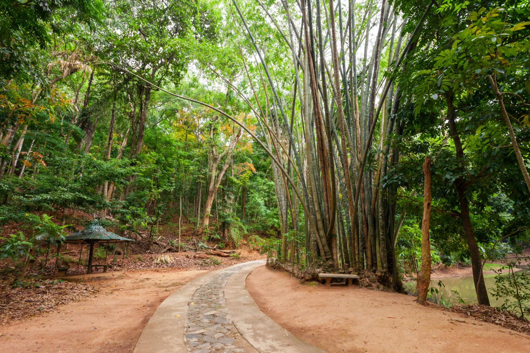 الاماكن السياحية في كاندي محمية أوداواتا كيلي