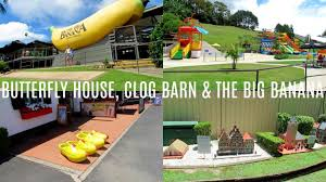 Coffs Harbour Vlog   Days 4 & 5 - Butterfly House, Clog Barn & The ... Postcard From Coffs Harbour Beyondtheflow Best Price On The Clog Barn In Reviews Nannapop Nsw And Act Return To Main Site 28th February 2009 Australia Traveling Together Atracciones Curiosas En Mira Todo Lo Que Hay Fuera Day Trip Fulltime Caravanning Victoria Grace Conqueror March 2014 Holiday Theclogbarnau Twitter Home Facebook Explore The Coast Our Naked