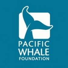 Pacific Whale Foundation - YouTube Standard Coent Goskills Coupon Codes 2019 Save Upto 50 Off On Annual Courses Harmon Discount Health Beauty Coupons Advanced Cardiac Life Support Acls Openlearningcom National Cpr Foundation Alcprfoundation Pinterest Code Promo Youtube Holiday Party Guide _page_3 Indy Chamber Maitreyi College Paul Roberts Mobility Strength And Weight Loss Sand Steel Eastway Edition Genesee Valley Penny Saver 5102019 By Lifesaving First Aid To Be Included In School Rriculum Could