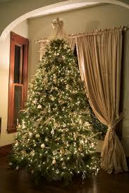 Christmas Tree Shop So Portland Maine by 976 Best Oh Christmas Tree Images On Pinterest Christmas