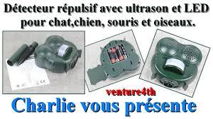 un très efficace détecteur répulsif avec ultrason et led pour chat
