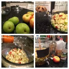 Best Pumpkin Pie Moonshine Recipe by Pie Sangria The Cookie Rookie