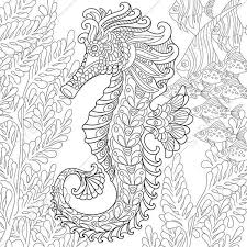 Seahorse Adult Coloring Page Zentangle Doodle Pages