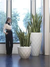 vondom pflanzgefäß vases rund d66cm kaufen im borono