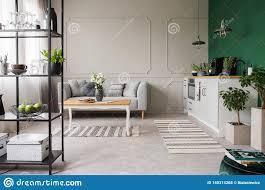grau und grüne großraumküche und wohnzimmer wirkliches foto