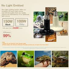 Flukers Turtle Clamp Lamp by Amazon Com Byb 100w 110v Ceramic Infrared Heat Emitter Brooder