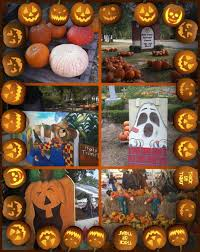 Pumpkin Patch Lafayette La by Fall Decorations In Lake Charles And Sulphur La Lake Charles