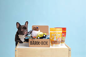 EXCLUSIVE Free Box Offer! Get 1 FREE BarkBox With New 3, 6 ... Bark Box Coupons Arc Village Thrift Store Barkbox Ebarkshop Groupon 2014 Related Keywords Suggestions The Newly Leaked Secrets To Coupon Uncovered Barkbox That Touch Of Pit Shop Big Dees Tack Coupon Codes Coupons Mma Warehouse Barkbox Promo Codes Podcast 1 Online Sales For November 2019 Supersized 90s Throwback Electronic Dog Toy Bundle Cyber Monday Deal First Box For 5 Msa