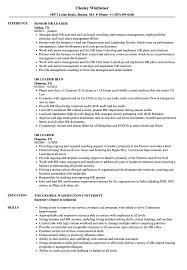 HR Leader Resume Samples | Velvet Jobs