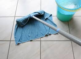 shark vacuum for tile floors carpet vidalondon zyouhoukan