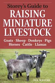 Storey's Guide To Raising Miniature Livestock: Goats, Sheep ... Which Pig Find Your Next Thing Modern Farmer Pigs Pigs And More Pigs Backyard Chickens Raising Feeder Concrete Or Pasture Farm Fresh For Life Figueroa Breeding Gguinto Bulacan Youtube For The First Time Page 2 Pastureraised Pork Grows In Popularity Missippi A Balancing Act Being A Mom Wife Backyard Hogswine Cambodian Case Study Inrgrated Fish Farming The Site How To House Fence Price Of Illinois Poisoned Creeks Yet Limited 223 Best Images On Pinterest Farms