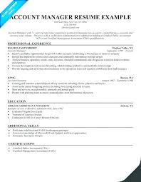 Sample Resume Industrial Painter For Account Manager Samples Examples