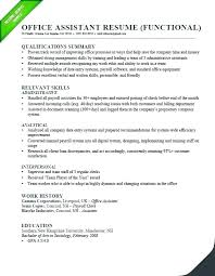 Sample Resume Professional Profile Example Accounting Also Statement For Objective Examples Create