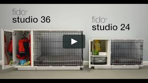 100 Studio 36 Fido Australia On Vimeo