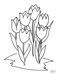 Click The Six Tulips Coloring Pages To View Printable Version Or Color It Online Compatible With IPad And Android Tablets