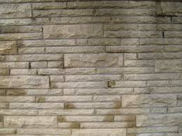 Tuscan Decorative Wall Plates by Decorative Stone Wall Plates E2 80 94 Home Office Interiors Loversiq