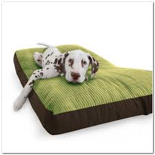 Chewproof Dog Bed by Chew Proof Dog Bed Dog Gone Smartu0027s Ninja Beds Are Not Just