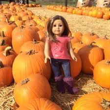 Pumpkin Patch Near Santa Clarita Ca by Nancys Ranch 12 Photos U0026 16 Reviews Christmas Trees 25039