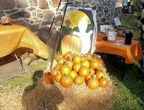 Emmaus Halloween Parade 2015 Pictures by A Very Merrie Halloween