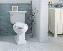 Kohler Memoirs Pedestal Sink 24 by Kohler Memoirs Toilet U2013 Massagroup Co
