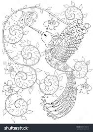 Birds Coloring Pages For Adults 1