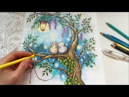 Sharing How I Color The Magical Water Lily Pond With Prismacolor Premier Colored Pencils Coloring Book Secret Garden By Johanna Basford