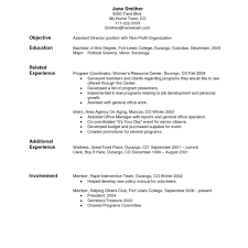 2017 Post Navigation Sample Professional Resume Examples Of A Templates
