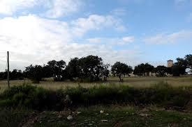 100 Truck Trader Houston Joes Confirms Stone Oak Location San Antonio ExpressNews