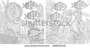 Coloring Book Pages For Kids Stylized Composition Of Tropical Fish Calamari Squid Seahorse Underwater Seaweed