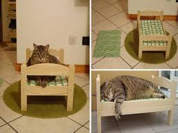 Warm Wooden Bed For Cat With pleted Frame And Couch Part of