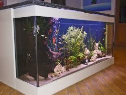 Uncategories : Fish Tanks In Homes Fish Tank Kitchen Island ... 60 Gallon Marine Fish Tank Aquarium Design Aquariums And Lovable Cool Tanks For Bedrooms And Also Unique Ideas Your In Home 1000 Rousing Decoration Channel Designsfor Charm Designs Edepremcom As Wells Uncategories Homes Kitchen Island Tanks Designs In Homes Design Feng Shui Living Room Peenmediacom Ushaped Divider Ocean State Aquatics 40 2017 Creative Interior Wastafel