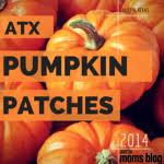 Best Pumpkin Patch Austin Texas by Best Pumpkin Patches In Austin