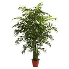 golden palm in pots 34 best artificial house plants images on plants