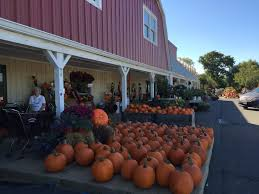 Pumpkin Farms In Nj by The Two River Times Dearborn Market Sold To Saker Shoprite Owners