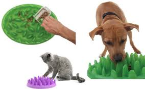 Top Interactive Feeders and Treat Toys for Pets