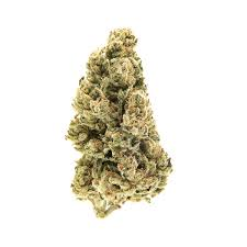 Strain Review Blues Chaser Cannabis Insight