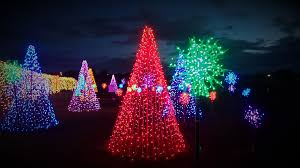 Fiber Optic Christmas Tree Philippines by Look U0027magical Field Of Lights U0027 In Nuvali Is The Perfect Christmas