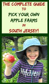 Pumpkin Picking Places In South Jersey by The Complete Guide To Pick Your Own Apple Farms In South Jersey