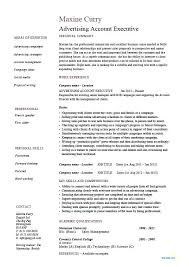 Sample Resume For Account Executive Position As Well Download