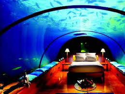 100 Water Discus Hotel In Dubai Live Under The Sea Times Of Dia