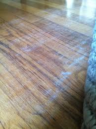 Felt Rug Pads For Hardwood Floors by This U0026 That Rug Help