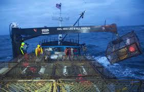 Deadliest Catch Boat Sinks Crew by Deadliest Catch U0027 Recap Wrecked On The Ship Fox News