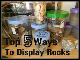 Handbook Of Nature Study Top 5 Ways To Display Rock Collections