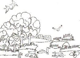 Pond Scene Landscape Coloring Pages