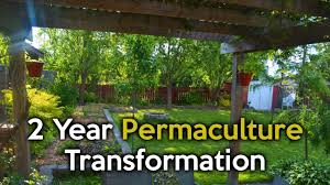 2 Year Permaculture Urban Garden Transformation - YouTube Thriving Backyard Food Forest 5th Year Suburban Permaculture Bill Mollison Father Of Gaenerd 101 Pri Cold Climate Archives Chickweed Patch Garden Design With Permaculture Kitchen Herb Spiral Backyard Orchard For The Yards Pinterest Orchards Australian House Garden January 2017 Archology Download Design And Ideas Gurdjieffouspenskycom Sustainable Farm Future Best 25 Ideas On Vegetable Youtube
