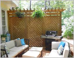 Alluring Patio Privacy Screen With Additional Home Design Planning